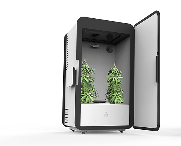 Leaf Cannabis Growing System at werd.com