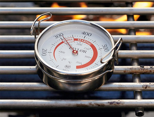 Taylor Grill Surface Thermometer at werd.com